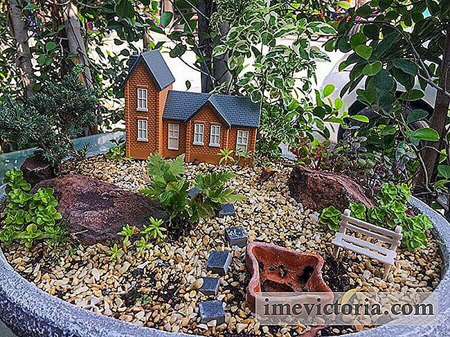 Mini Garten, 6 Tolle Ideen Für Die Erstellung