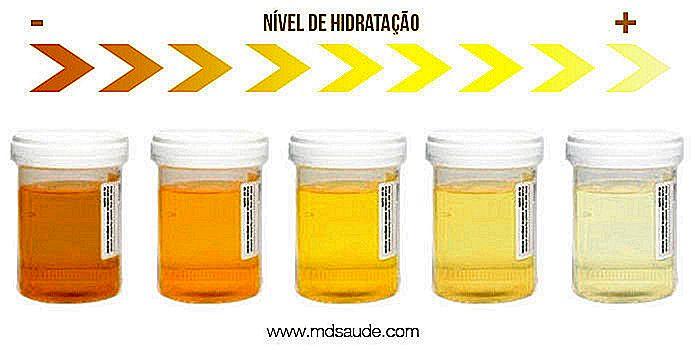 ildelugtende urin