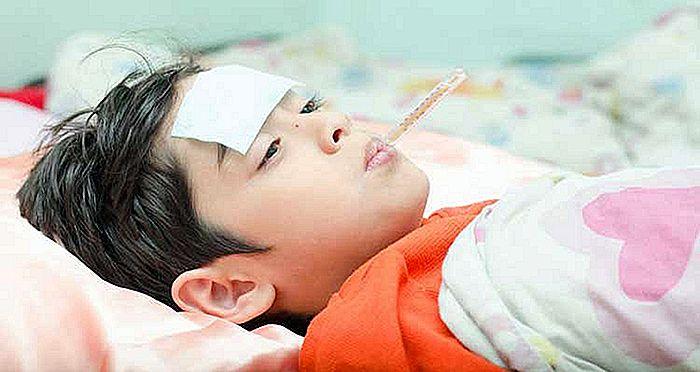 Symptomen Van Bacteriële En Virale Meningitis Nlimevictoriacom