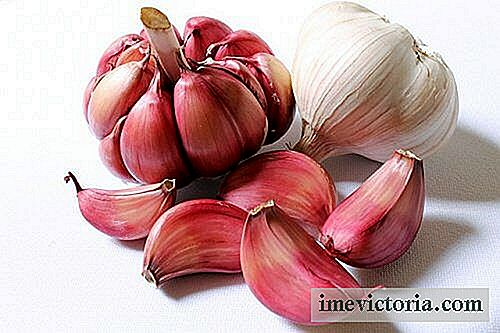 Purple Garlic for Gynaecological Problems